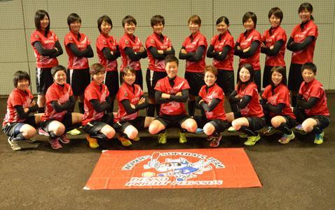 ソフト 機構 日本 ボール