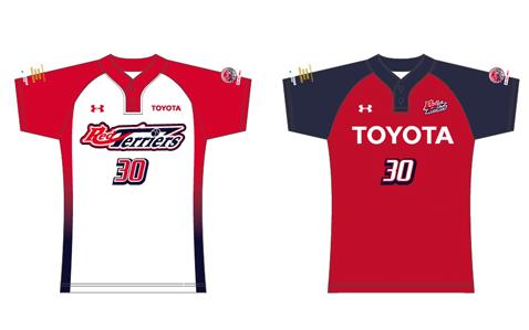日本女子ソフトボールリーグ機構TEAMS